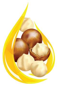 Macadamia oil. Stylized drop.