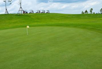 Beautiful green grass pattern