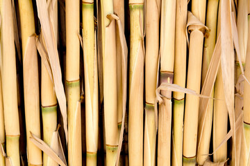 7e3d571454a7 Bamboo cane row arrangement background - Buy this stock photo and ...
