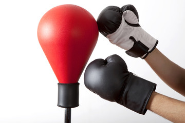 pungiball with two gloves