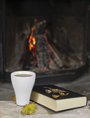 Book and hot bevrage in front of an fireplace