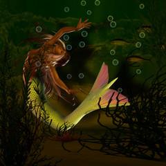 Photo sur Aluminium Mermaid Nixe unter Wasser