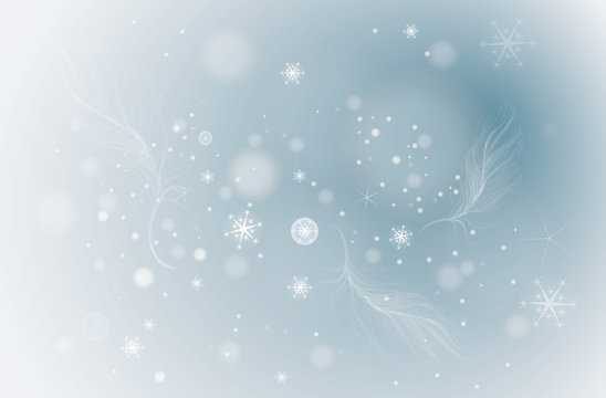 Feather in the winter sky / Snow blue background