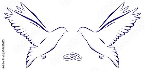Zwei Tauben Mit Zwei Ringen Hochzeit Heiraten Feier Stock Image And