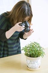 一眼レフカメラで花を撮影する女性