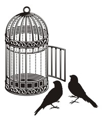 Aluminium Prints Birds in cages Bird cage