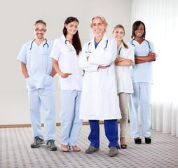 Portrait of a group of mature doctors