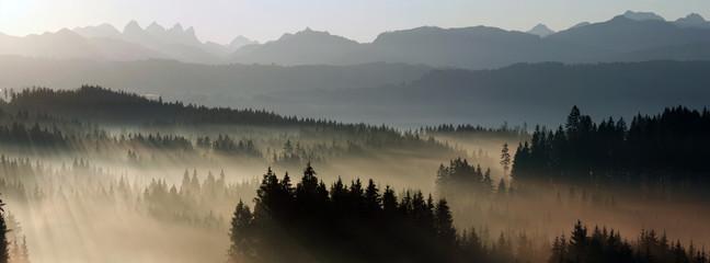 Poster Morning with fog sonnenaufgang im Allgäu