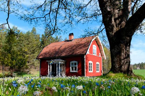 typisches rotes holzhaus in schweden stockfotos und lizenzfreie bilder auf bild. Black Bedroom Furniture Sets. Home Design Ideas