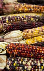 Decorative dried corn