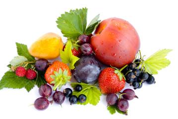 фрукты на белом фоне