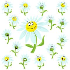 happy daisy flower cartoon
