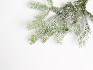 christmas background with twig