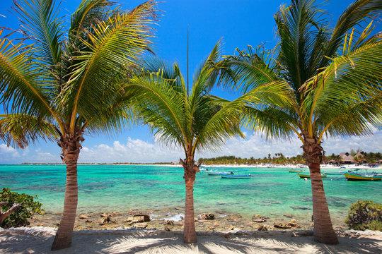 Akumal beach in Mexico