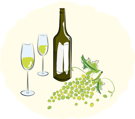 Bottle of white wine with a glass and a brush of light grapes. V