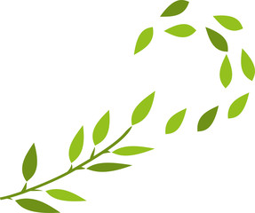 Baum, tree, Blätter, Grün