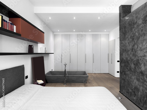 Camera da letto moderna con vasca da bagno\