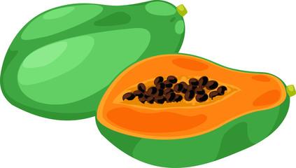 illustration papaya vector file on White background