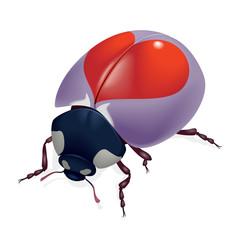 Ladybug with hearts