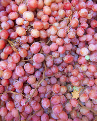 earth treasures, red grapes