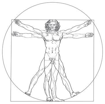 Vitruvian Man, Leonardo da Vinci. The Vitruvian Man, based on the records of Leonardo da Vinci and the architect Vitruvius. Illustration on white background. Vector.