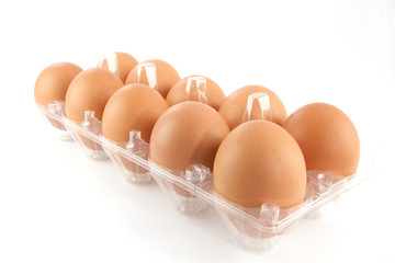 egg in plastic case