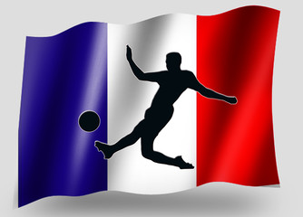 Country Flag Sport Icon Silhouette French Soccer