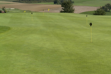 golf scenery at summer time