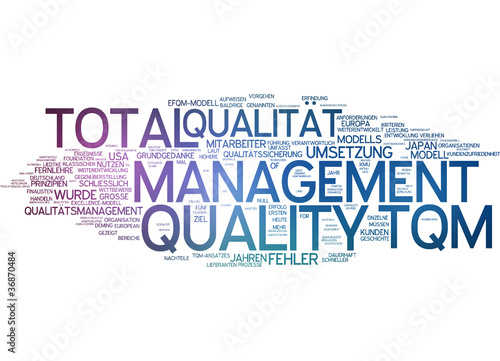 total quality management tqm 0 13 what is total quality management total quality management (tqm) is the term given to the federal government's organization-wide effort of continuous process improvement the federal quality institute defines11 tqm as a strategic, integrated management system for achieving.