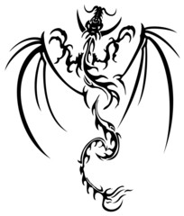 Beautiful dragon illustration
