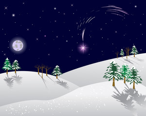 Winter landscape with christmas star.