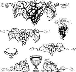 Set picture of ripe grapes, monochrome picture