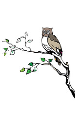 An owl sitting an a branch of a tree