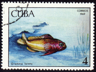 Fish Gramma loreto on post stamp