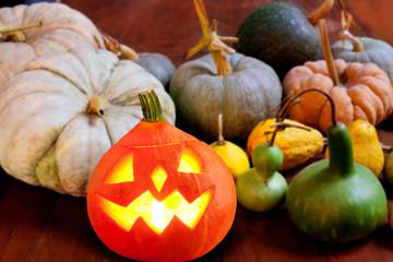 Halloween pumpkin Jack o lantern glowing