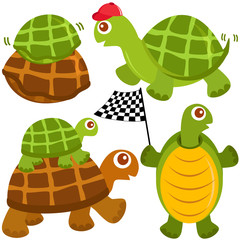 cute vector collection of Turtle, the winner isolated on white