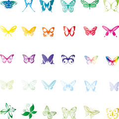 Schmetterlinge, butterflies, Insekten, insects