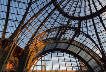 Tuinposter Aan het plafond Grand Palais, verrière, Paris