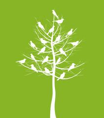 On a tree birds sit. A vector illustration
