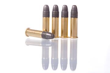 several .22 caliber bullets