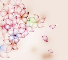 Flowers. Vector illustration.