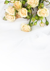 Small roses in a white cloth isolated on white
