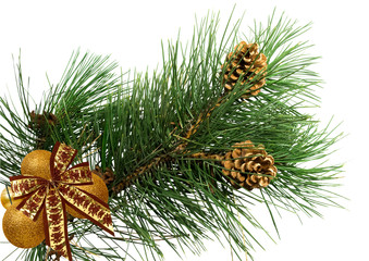 pine branch with cones, bow and christmas balls