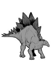 Stegosaurus armatus