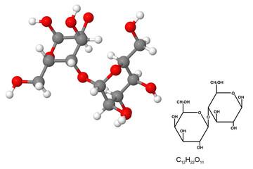 Lactose molecule