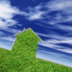 High resolution conceptual grass house