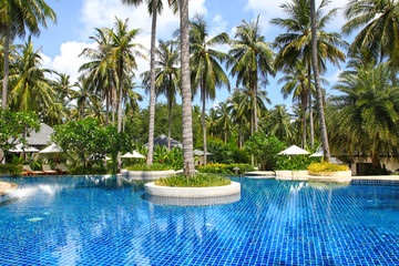Tropical Swimming pool surrounded by pam trees, coconut trees