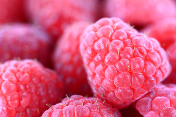 Closeup photo of sweet Raspberry