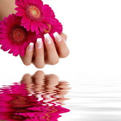 Wall Mural - Naildesign pink