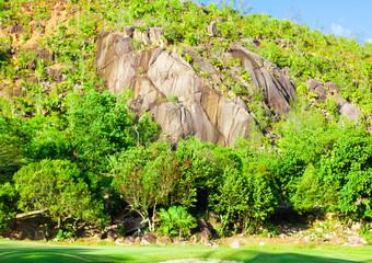 Area Golf Landscape